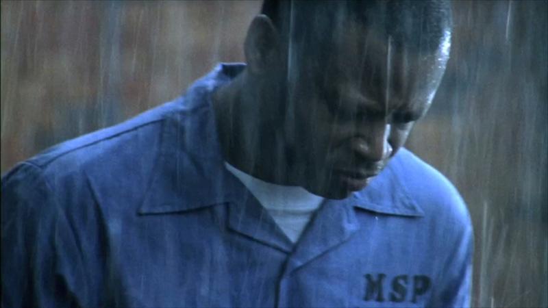 Turnipseed (2008)