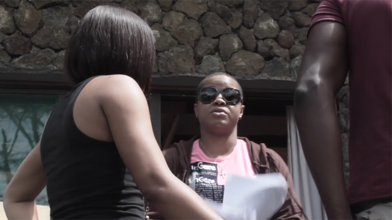 Amaka's Kin: The Women of Nollywood (2016)