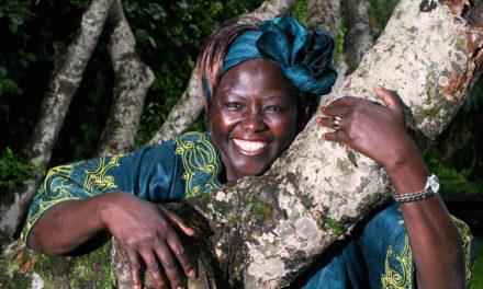 Taking Root: The Vision of Wangari Maathai (2008)