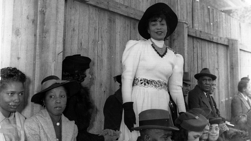 Zora Neale Hurston: Jump at the Sun (2008)